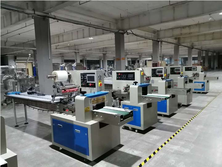 The structure of Pillow type Packaging Machine (1)